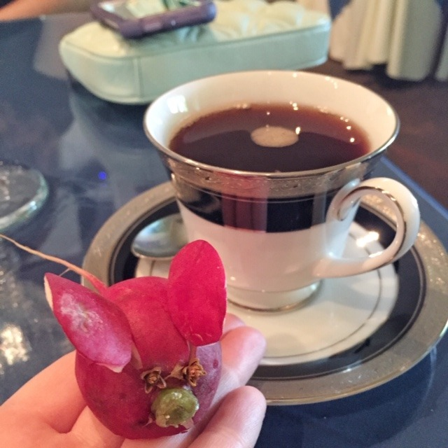 DeGolyer House - Dallas Arboretum Tea