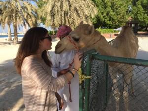 Camel kisses Abu Dhabi thesweetwanderlust.com