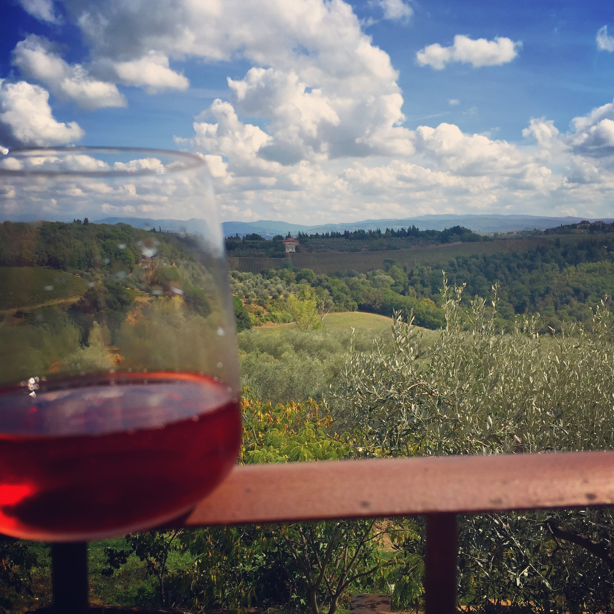 View from Podere Gualandi thesweetwanderlust.com