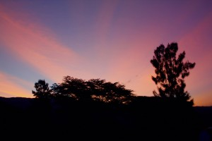 Kenya sunrise thesweetwanderlust.com