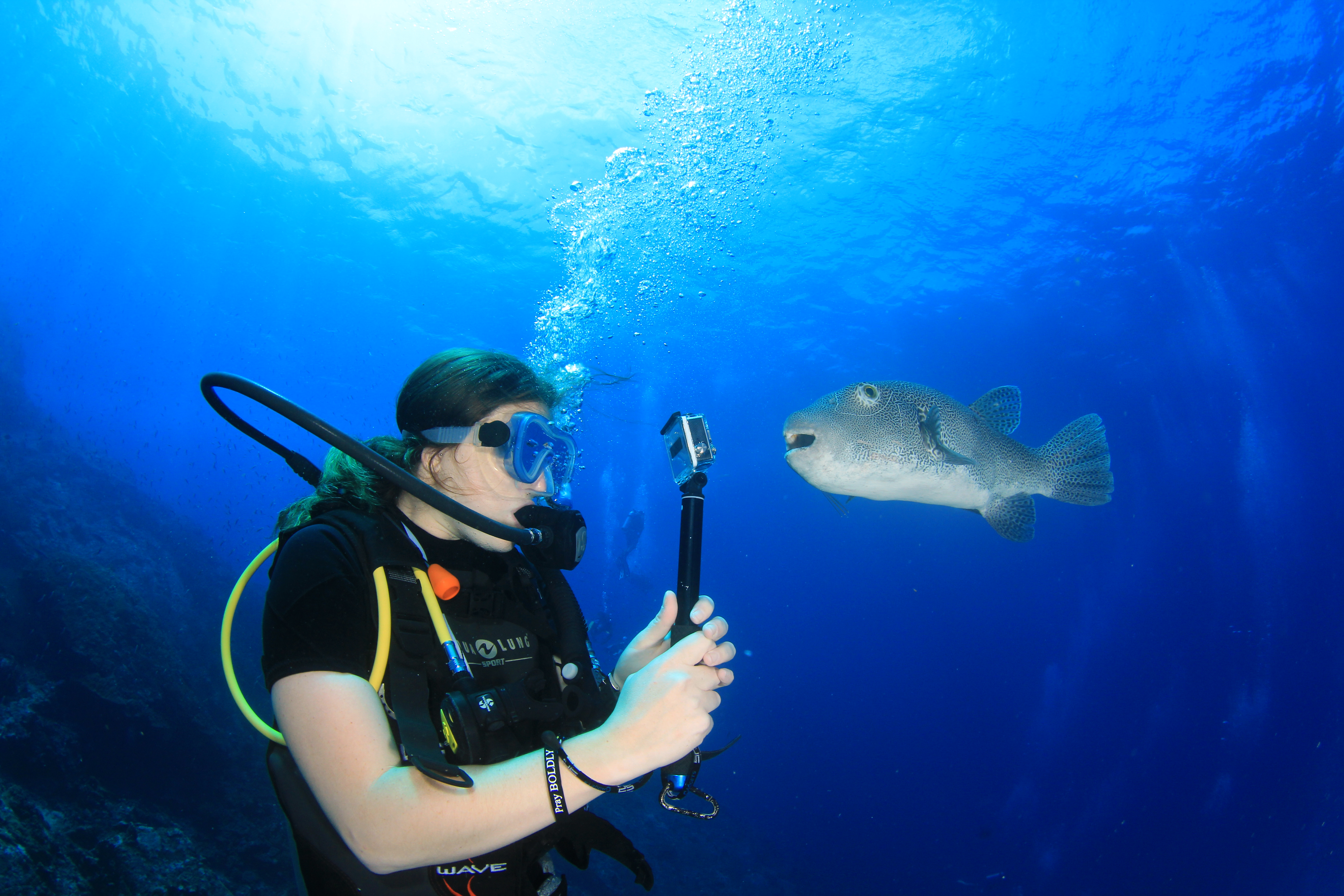 Similan Explorer- Similan Diving Safaris