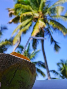 WelcomHotel Kerala coconut on the backwaters thesweetwanderlust.com