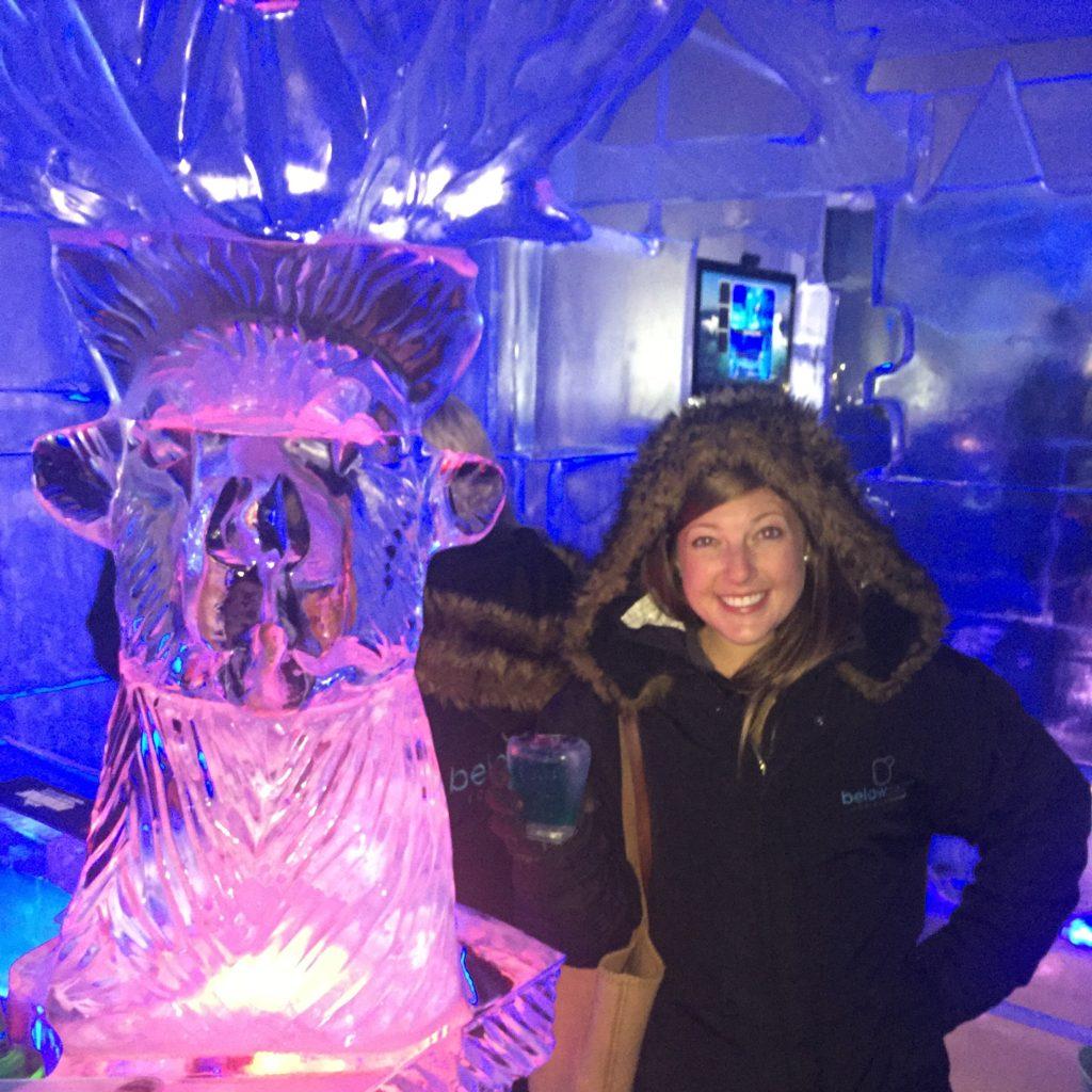 Below Zero Ice Bar Queenstown thesweetwanderlust.com