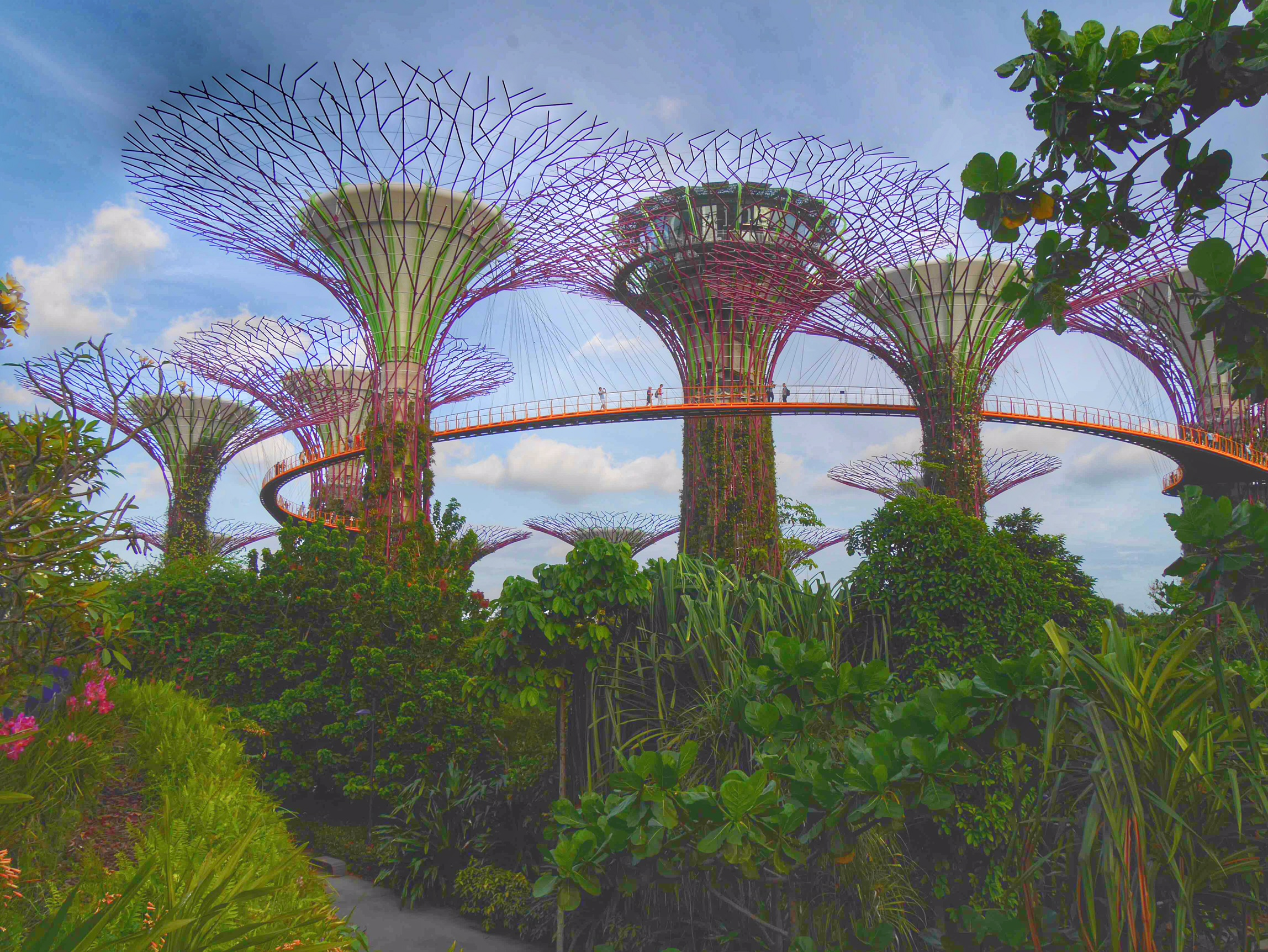 Supertree grove Singapore thesweetwanderlust.com