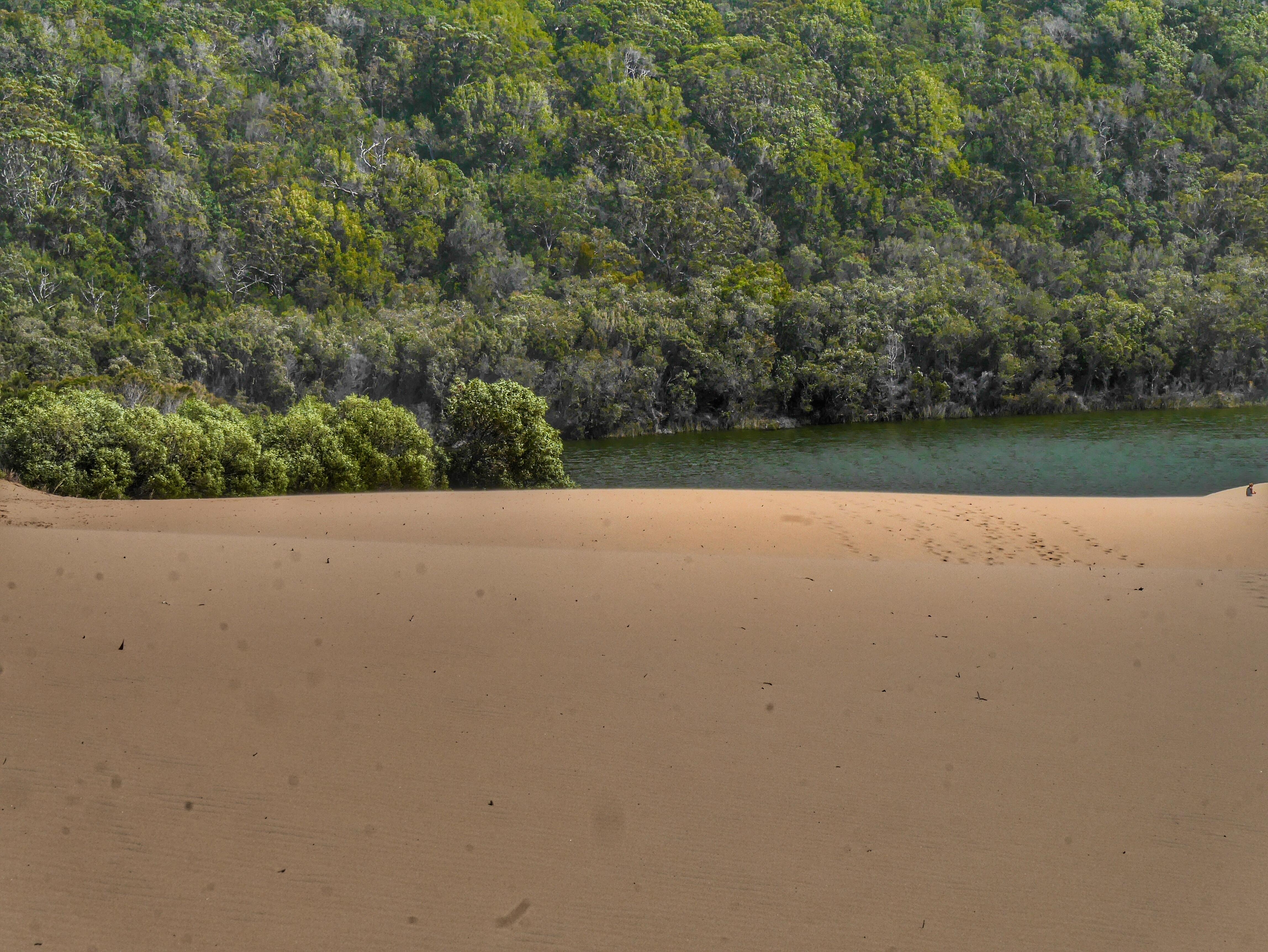 Lake Wabby on Fraser Island Australia thesweetwanderlust.com
