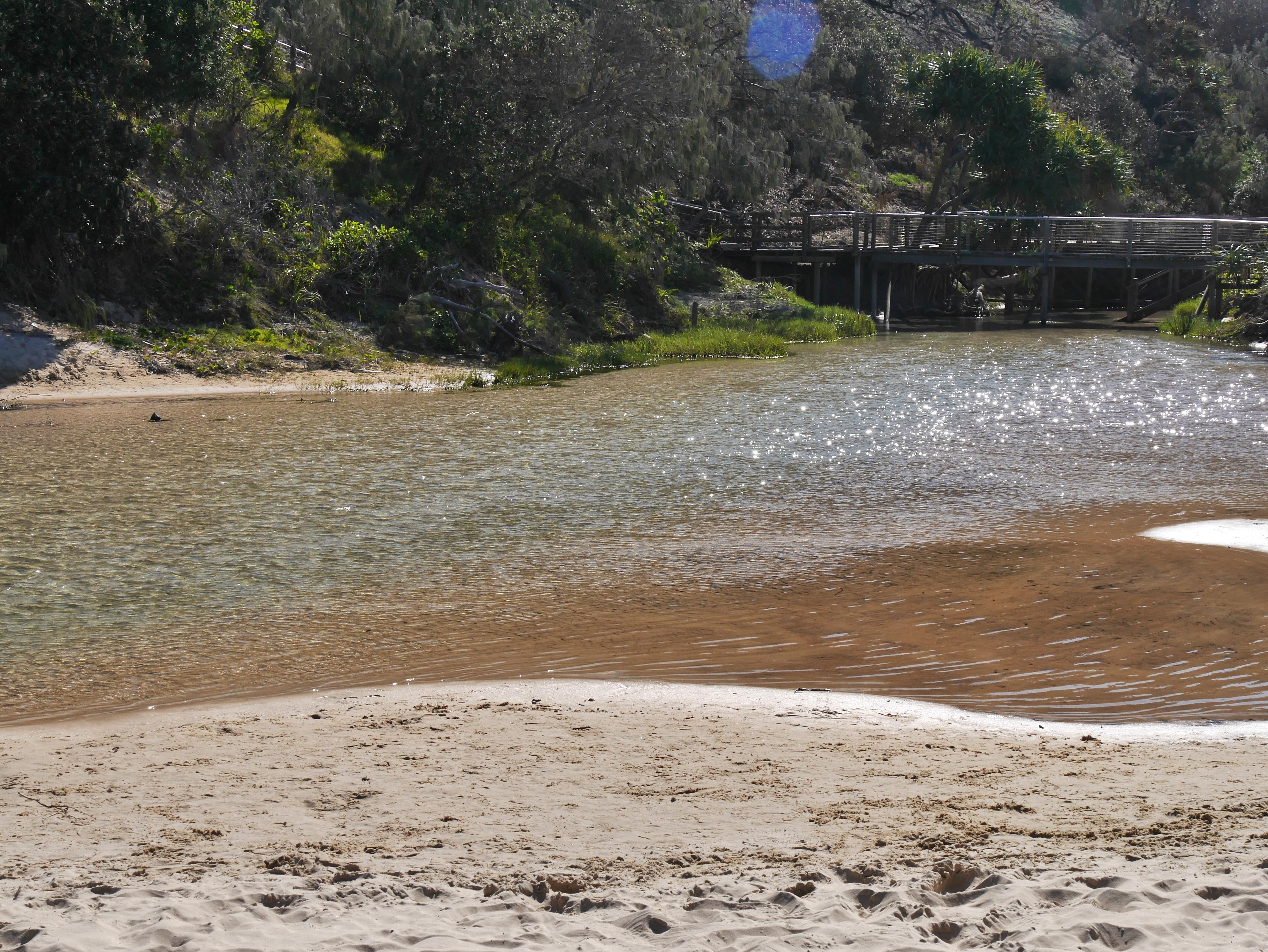 Eli Creek Fraser Island Australia thesweetwanderlust.com