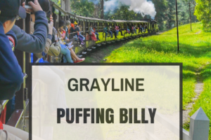 Gray Line Puffing Billy with wildlife and winery lunch