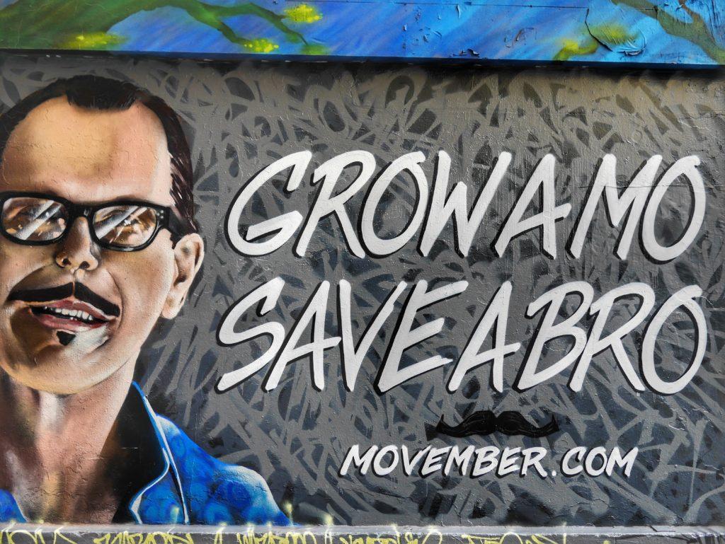 Melbourne CBD best street art Hosier no shave november
