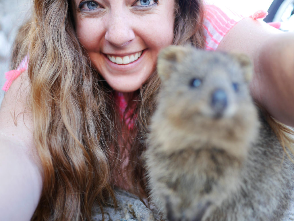 Rottnest Island quokka selfie fail thesweetwanderlust.com