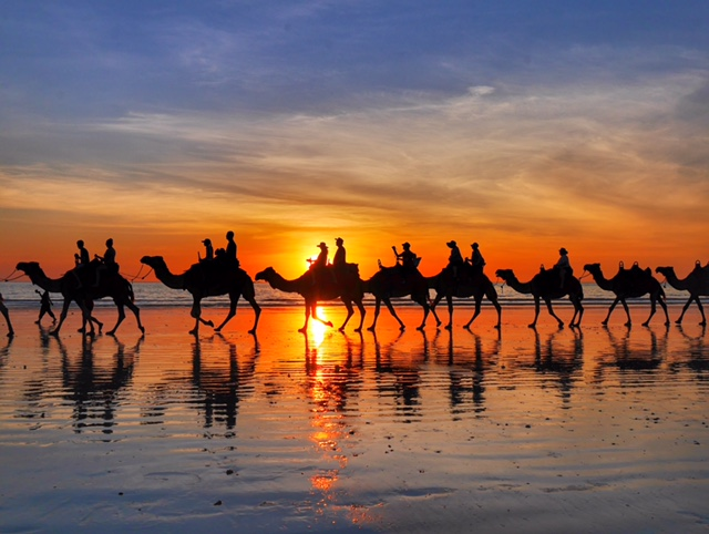Ride a camel on Cable Beach at sunset in Broome Australia