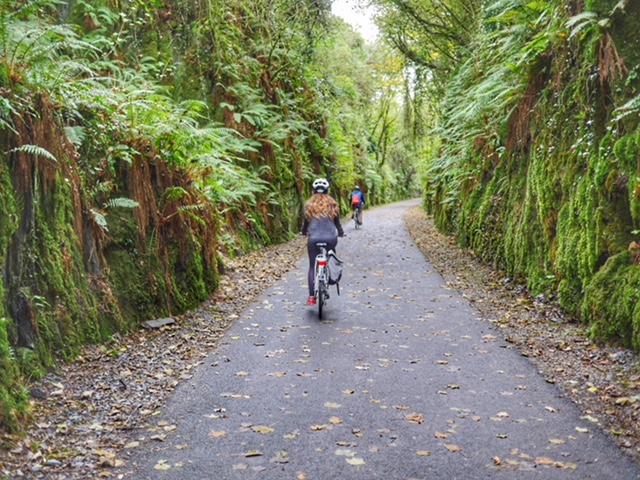 Waterford Greenway bike path Ireland