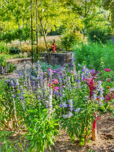 La Bastide de Moustiers jardin