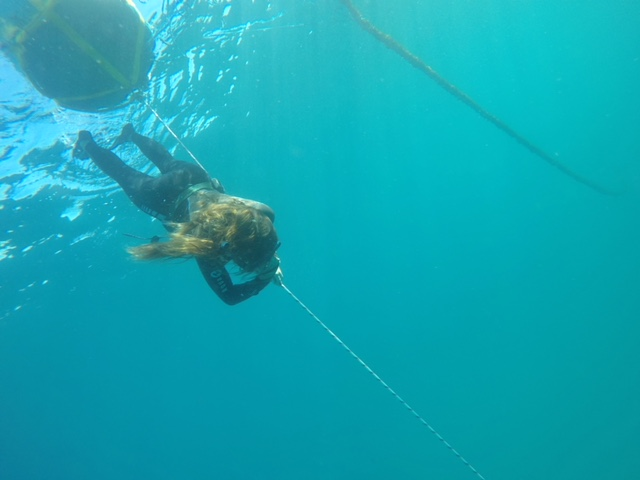 Freediving Exmouth