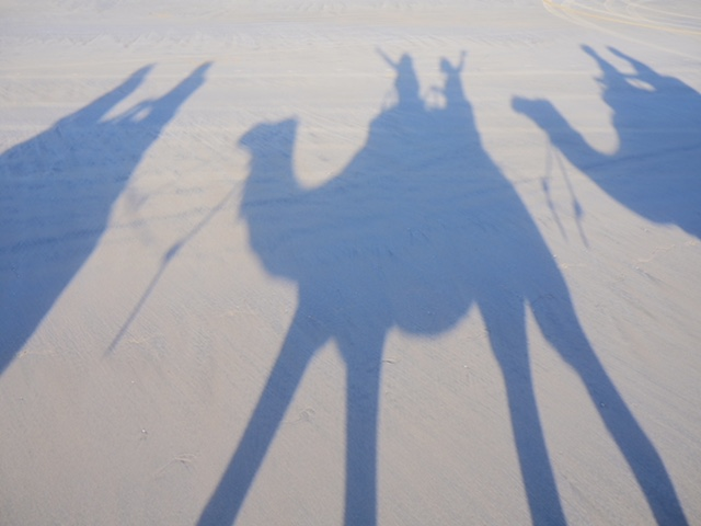 Camel Ride on Cable Beach Australia