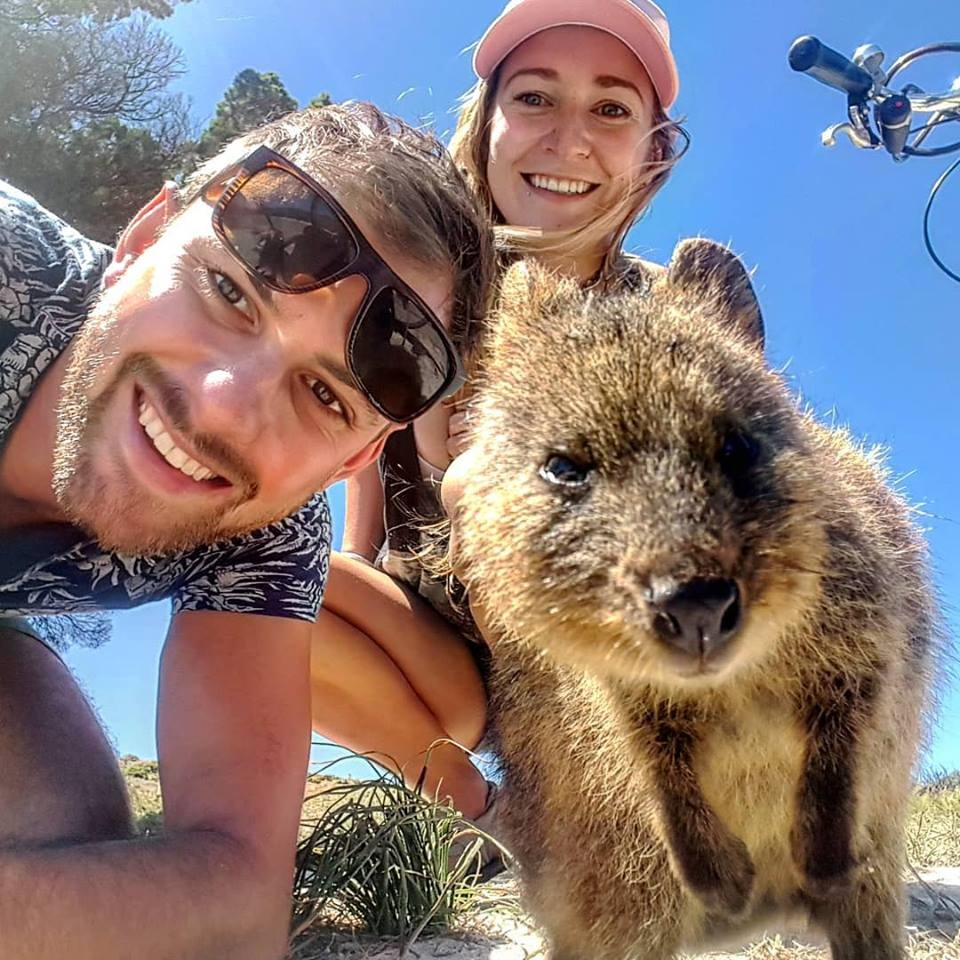 quokka selfie on Rottnest Island