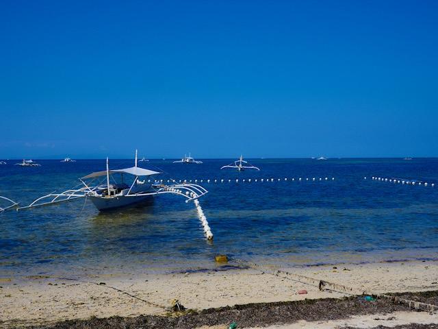 BetterMan Tours snorkel trip from Alona Beach