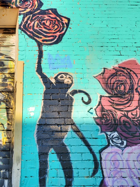 Deep Ellum Street Art Dallas TX monkey