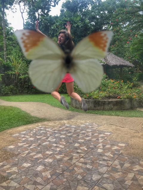 Simply Butterflies Exhibition Center