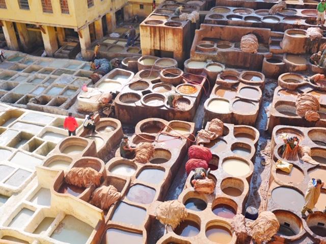 Fez Chaouwara tannery