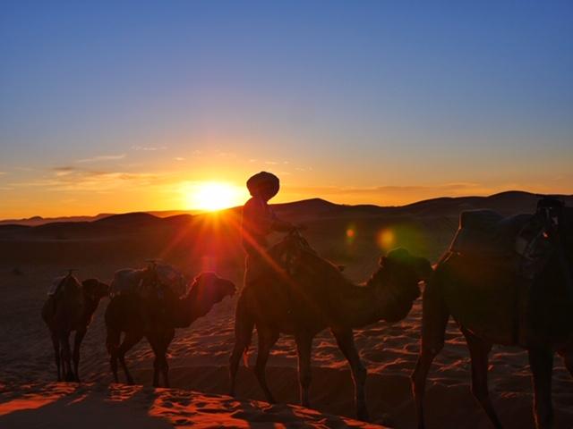 Berber nomad in Sahara at sunset