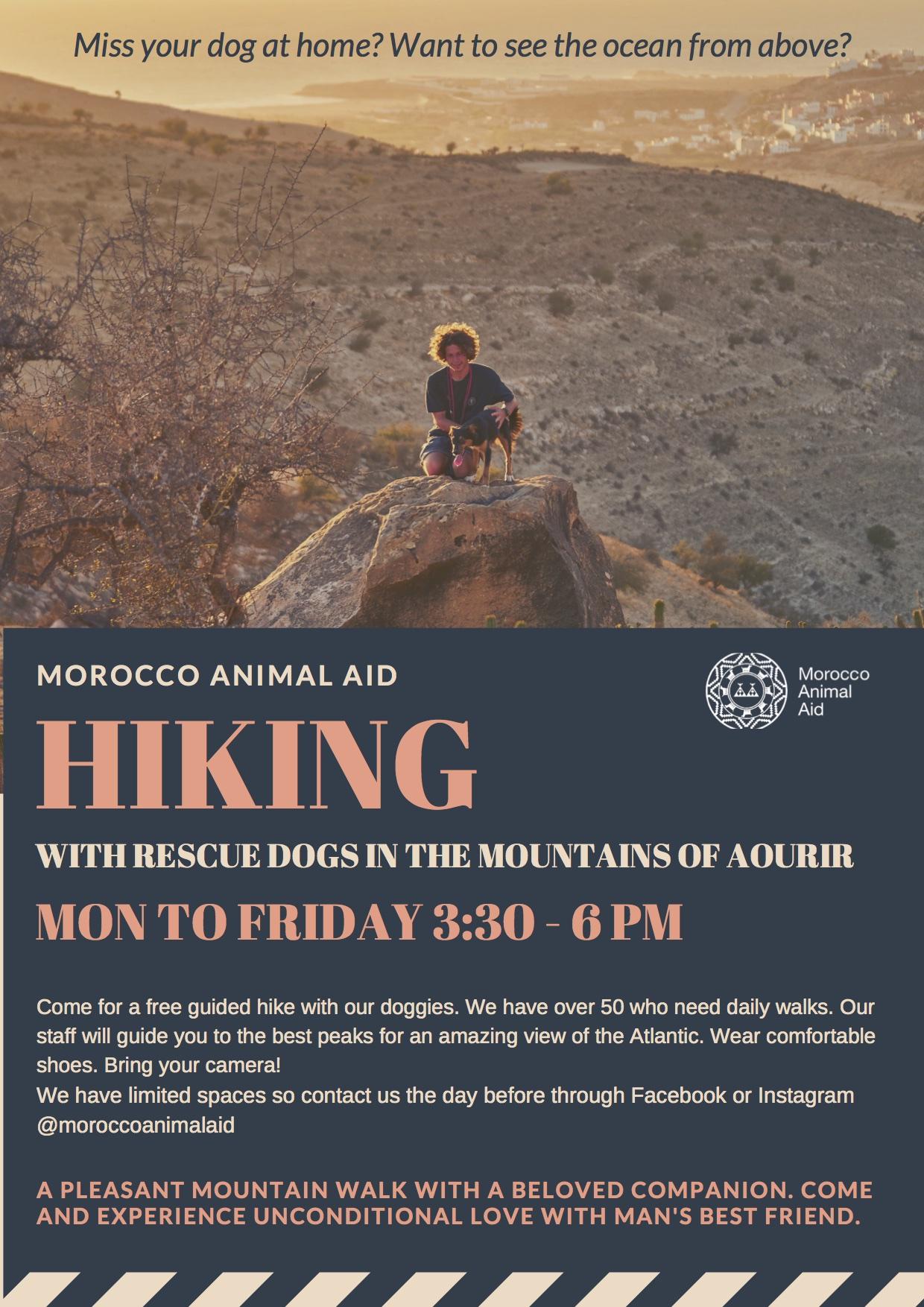 Moroccan Animal Aid volunteer hike