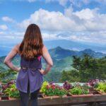 40+ epic things to do in Shizuoka, Japan