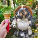 A tea tour that's so MATCHA fun in Uji, Kyoto