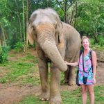 Samui Elephant Haven: an ethical day with happy elephants